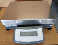 Sartorius Standard Industriewaage CPA34000-OCE